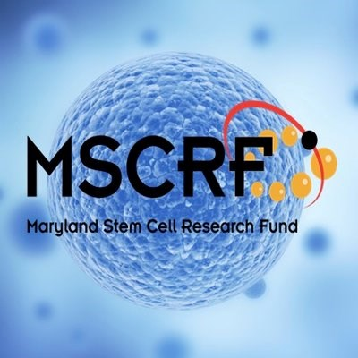 Maryland Stem Cell Research Fund Launches New Website to Better Serve the Stem Cell Community