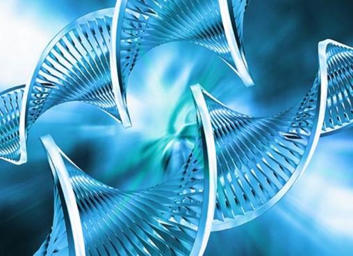 Measuring Global Biotechnology Innovation