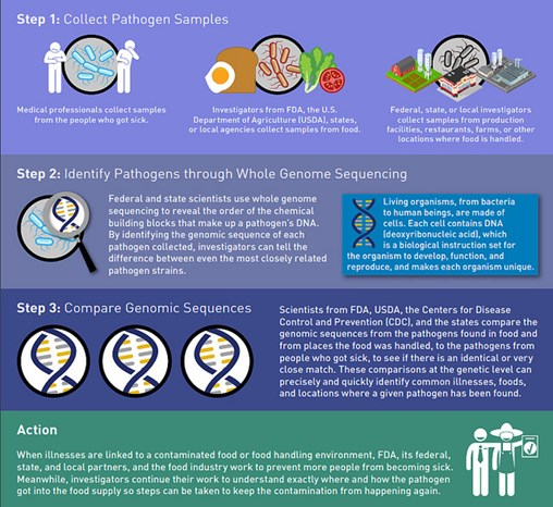 Antimicrobial Resistance and Whole Genome Sequencing – What Is Changing?