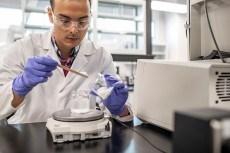 Charleston HDK lab