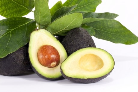 Genetic Research Could Stop Avos Going Brown