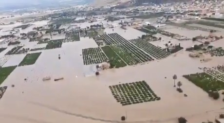 """Clearing the Rubble in Spain After the Severe Weather; Leafy Vegetable Shortages a Sure Thing in the Winter"""""""