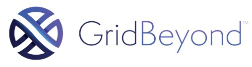 GridBeyond's Advanced Technology Platform That Helps Consumers Monetise Their Energy