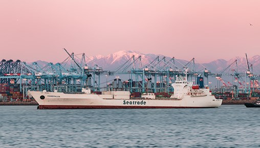 Worsening LA-LB Port Congestion Stalls Recovery