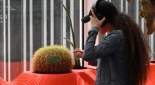 a woman wearing headphones touches a cactus