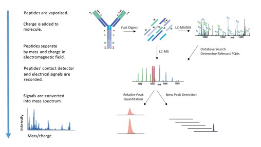 Fig. 1. Why is mass spectrometry (MS) so useful to manufacturers for quality control?