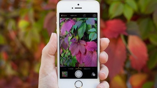 5 Ways to Keep up With Instagram's Ever-Changing Algorithm