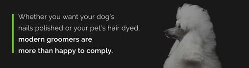 modern groomers